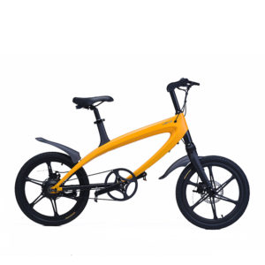 LeHe S1 Series Electric Bicycle
