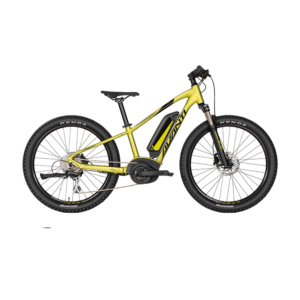 AVANTI Bike Montari-E Junior